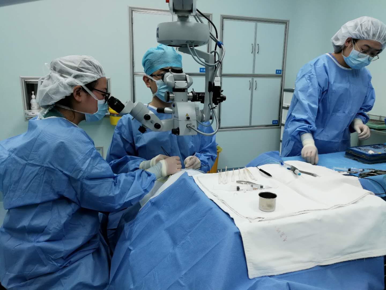 眼底病日间手术的种类范围扩大,就医更便捷!