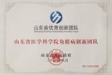 山东省优秀创新团队