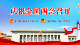政府工作报告(来源:新华网)